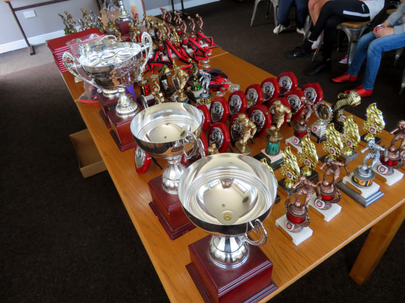 Holmfirth Town Juniors trophies and medals